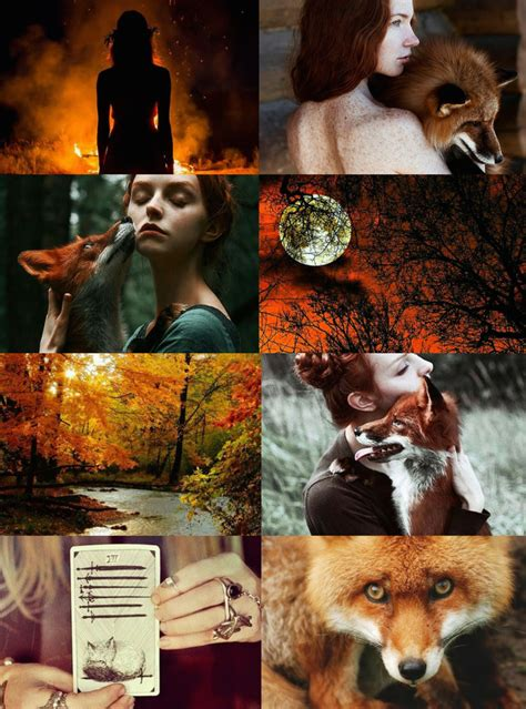 animal witch aesthetics fox witch requested bird