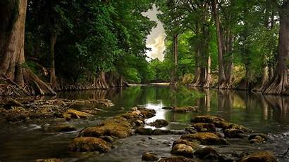 Nature Wallpapers 900 1600