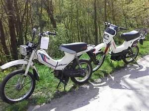 Honda Px 50 : honda px 50 yamaha sg 50 sting bestes angebot von honda ~ Melissatoandfro.com Idées de Décoration