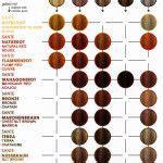 rusk hair color chart hair dye rusk hair color education rusk hair color chart