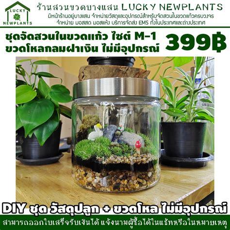 สวนในขวดแก้ว ชุดปลูกพร้อมขวดโหลแก้ว แบบประหยัด 399   Shopee Thailand