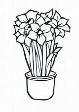 Coloring Flowers Flores Colorear Dibujos Tropical Flower Printable Colorare Disegni Clip Pintar Sementes Amor Fiori Adult Popular Vaso Clipart Books sketch template