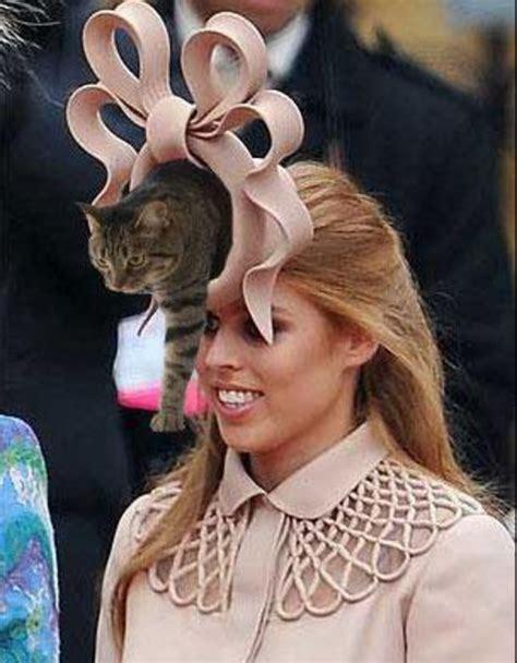 Princess Beatrice Hat Meme - image 119519 princess beatrice royal wedding hat know your meme
