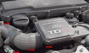 Vidange Ford Fiesta 1 4 Tdci : moteur ford fiesta moteur ford fiesta 2000 diesel moteur ford fiesta v diesel moteur ford ~ Melissatoandfro.com Idées de Décoration