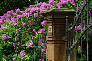 Laute Musik Tagsüber Im Garten : l rm und laute musik sind die hauptstreitpunkte am gartenzaun ~ Frokenaadalensverden.com Haus und Dekorationen