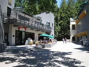 File:Quarry Plaza, UCSC.jpg - Wikimedia Commons
