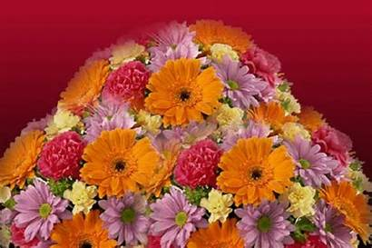 Thank Flowers Greetings Card Ecard Cards Heap