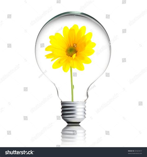 yellow flower growing inside the light bulb stock photo