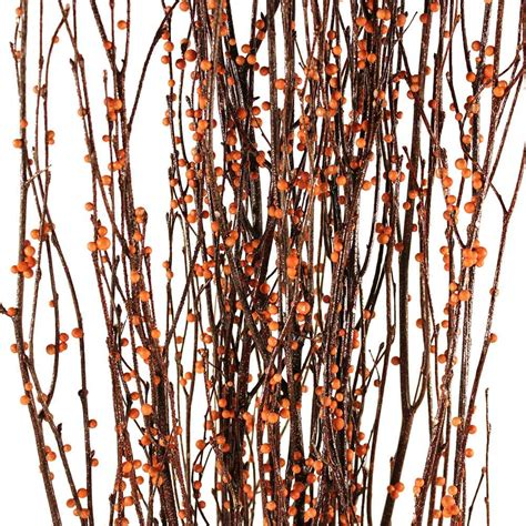Decorative Branches  Bittersweet Birch Branches. Ashley Leather Living Room Sets. Vornado Room Heater. Dining Room Sets Target. Candle Decorating Kit. Quiet Room Air Conditioners. Decorative Leggings. Decorative Bed Pillows. Catholic Home Decor