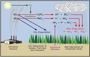 Acid Rain - Its Causes And The Cycle