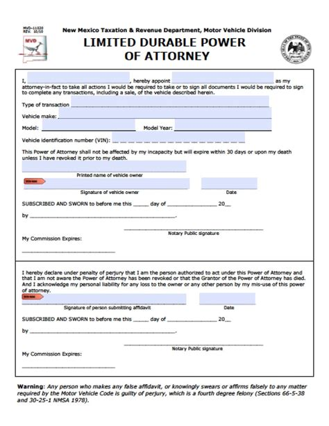 mexico limited special power  attorney form