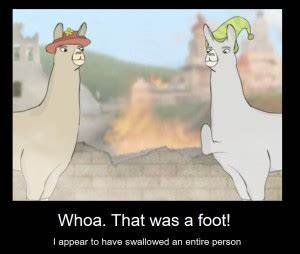 Quotes From Llamas With Hats. QuotesGram