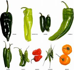 A Visual Guide to Peppers and Chilis - Gear Patrol