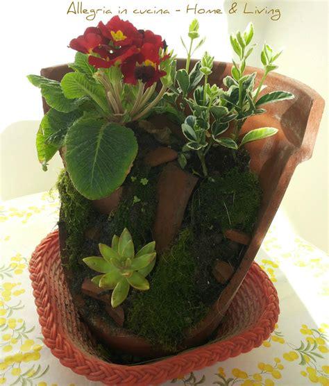 vaso di coccio piante nel coccio rotto home living allegria in cucina
