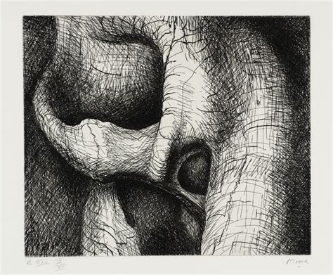 elephant skull plate xxv henry moore om ch tate