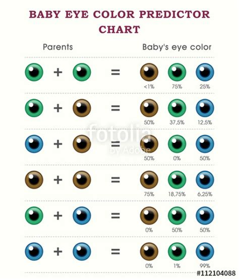 quot baby eye color predictor chart template quot stock image and