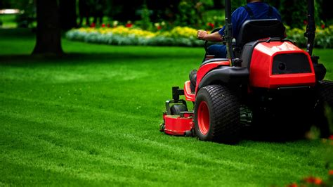 Lawn Care Tips For Winter 2017