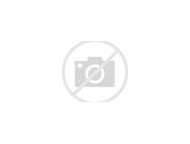 Rock Custom Pet Portrait