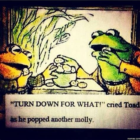 Frog And Toad Meme - frog and toad go hard memes com