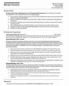 fancy executive resume builder frieze example resume With executive resume builder