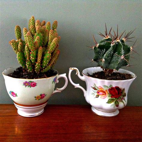 Salute to Cute: Teacup Succulents