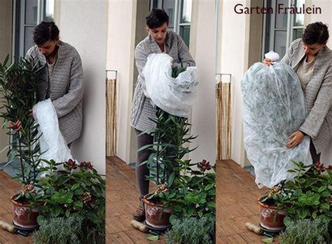 Balkon Und Kübelpflanzen Winterfest Machen  Handmade Kultur