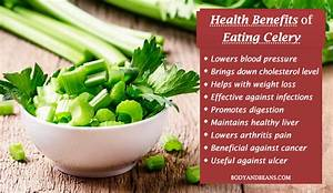 Benefits of Eating Celery: From Weight Loss to Cholesterol ...