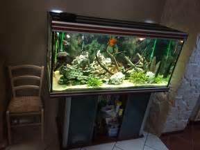 aquarium a vendre pas cher aquarium a vendre pas cher poisson naturel