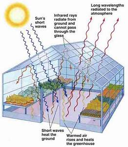 Greenhouse Functions