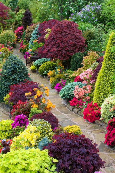 25 beautiful azaleas landscaping ideas on