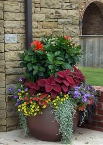 Marvelous, Best, Container, Gardening, Design, Flowers, Ideas