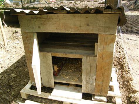 gabbie per quaglie a terra ricovero per oche biologico cocincina poultry community