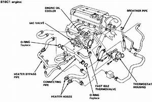 1991 Honda Accord Lights Diagram