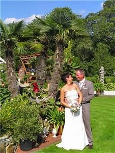 Palmen Für Den Garten : hochzeitsfotos unter palmen ~ Sanjose-hotels-ca.com Haus und Dekorationen