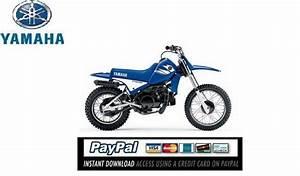 Download Service  U0026 Repair Manual Yamaha Pw80 2006