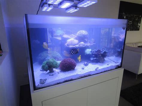 aquarium sauber machen anleitung aquarium sauber machen de aquarium filter tank wasserpumpe reiniger kies wie macht ein