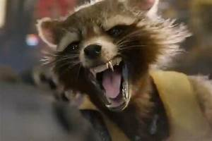 Rocket Raccoon Guardians Of The Galaxy Poster