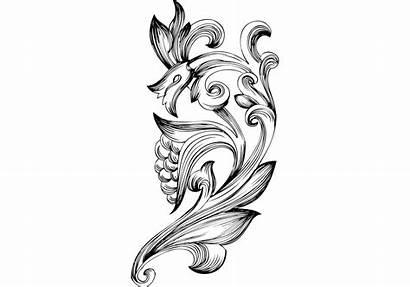 Vector Elements Floral Ornamental Border Graphics Flourishes