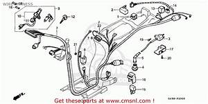 Honda Sh50d Scoopy 1993  P  France Cmf Kph Wire Harness