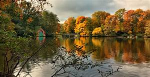Wallpaper, Trees, Landscape, Leaves, Lake, Nature, Reflection, Park, Clouds, Symmetry, Green