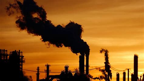renewing  call  divest  fossil fuel companies