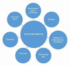 Osteoarthritis Risk Factors