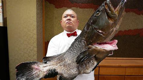 japan food grouper japanese goliath sushi giant