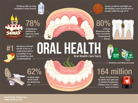 Oral Health An Insight Into Overall Health. How To Use Search Engine Optimization. When Is The Best Time To Transplant A Tree. Credit Card Readers For Smartphones. Healthcare Risk Management Plan. It Operation Management Joint Degree Programs. University Park Portland Trade Show Back Drop. Safety Of Cloud Storage Pink And Black Outfit. Home Alarm Monitoring Services