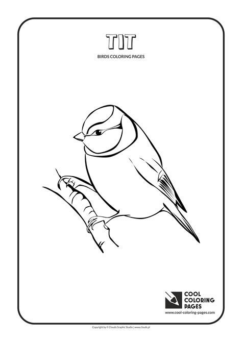 cool coloring pages birds coloring pages cool coloring