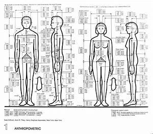 architectural graphic standards Эргономика Pinterest