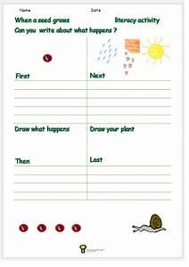 Growing A Seed Worksheet Plant Worksheet Activity Science