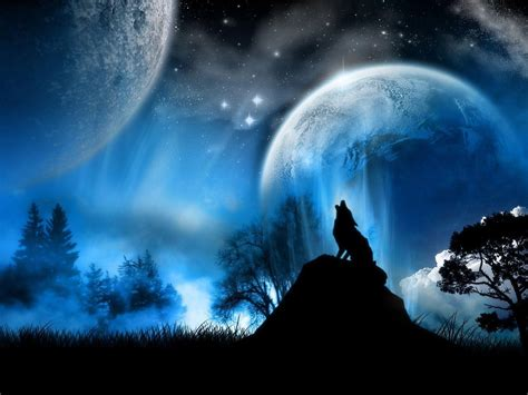Animated Wolf Wallpaper Hd - anime wolf wallpapers wallpaper cave