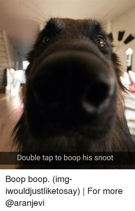Boop Meme - 25 best memes about snoot snoot memes