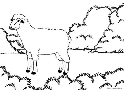 coloring pages coolbkids